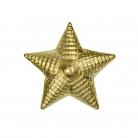 Звезда латунная рифленая 20мм. (МО)