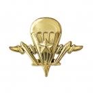 Эмблема сил специальных операций вооруженных сил